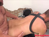 Stud hairy asshole screwed